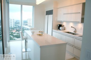 Dana_point_Modern_kitchen_Sophia_Cabinets_in_Winter_White00002