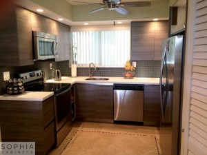 Huntington_beach_Modern_Kitchen_Sophia_Cabinets_in_Oregon_Pine00001