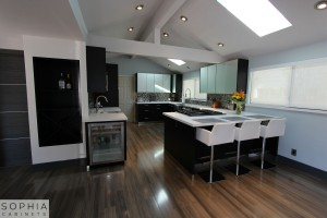 Modern_Style_Kitchen_Sophia_cabinets_San_Clemente_OC00002