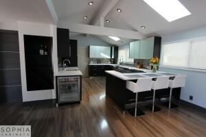 Modern_Style_Kitchen_Sophia_cabinets_San_Clemente_OC00003