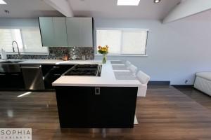 Modern_Style_Kitchen_Sophia_cabinets_San_Clemente_OC00006