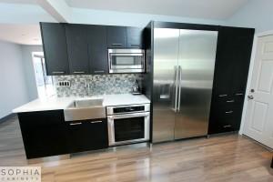 Modern_Style_Kitchen_Sophia_cabinets_San_Clemente_OC00008