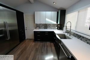 Modern_Style_Kitchen_Sophia_cabinets_San_Clemente_OC00009