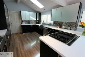 Modern_Style_Kitchen_Sophia_cabinets_San_Clemente_OC00012