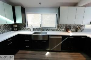 Modern_Style_Kitchen_Sophia_cabinets_San_Clemente_OC00013