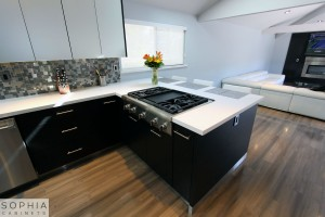 Modern_Style_Kitchen_Sophia_cabinets_San_Clemente_OC00015