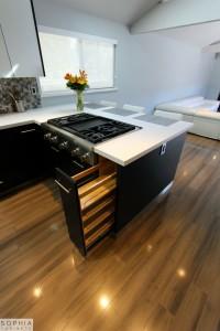 Modern_Style_Kitchen_Sophia_cabinets_San_Clemente_OC00016