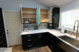 Modern_Style_Kitchen_Sophia_cabinets_San_Clemente_OC00020