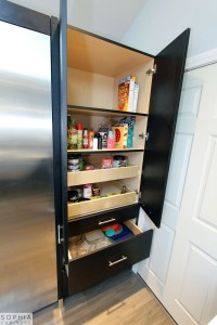 Modern_Style_Kitchen_Sophia_cabinets_San_Clemente_OC00021