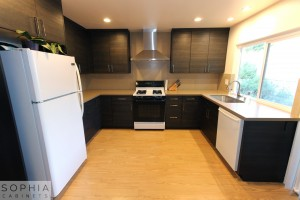 San_Clemente_Modern_kitchen_Sophia_Cabinets_in_Carbone00001