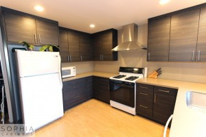 San_Clemente_Modern_kitchen_Sophia_Cabinets_in_Carbone00002