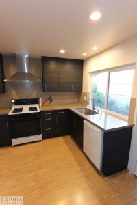 San_Clemente_Modern_kitchen_Sophia_Cabinets_in_Carbone00007