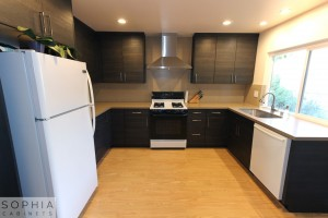 San_Clemente_Modern_kitchen_Sophia_Cabinets_in_Carbone00011