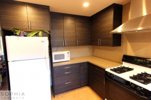 San_Clemente_Modern_kitchen_Sophia_Cabinets_in_Carbone00013