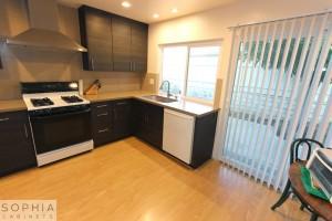 San_Clemente_Modern_kitchen_Sophia_Cabinets_in_Carbone00017