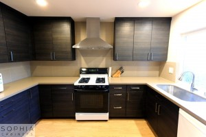 San_Clemente_Modern_kitchen_Sophia_Cabinets_in_Carbone00018
