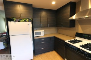 San_Clemente_Modern_kitchen_Sophia_Cabinets_in_Carbone00020
