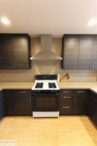 San_Clemente_Modern_kitchen_Sophia_Cabinets_in_Carbone00021