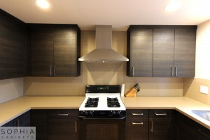 San_Clemente_Modern_kitchen_Sophia_Cabinets_in_Carbone00022
