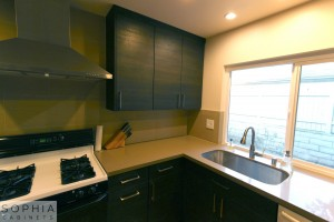 San_Clemente_Modern_kitchen_Sophia_Cabinets_in_Carbone00024