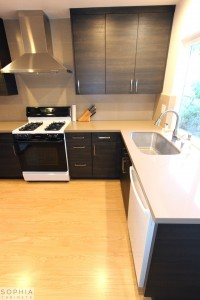 San_Clemente_Modern_kitchen_Sophia_Cabinets_in_Carbone00029