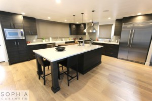 Sophia_Line_cabinets_Modern_contemporary_style_kitchen_long_beach00001