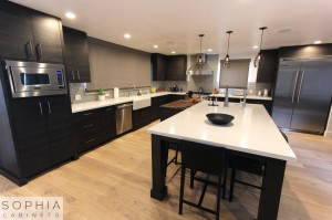 Sophia_Line_cabinets_Modern_contemporary_style_kitchen_long_beach00002