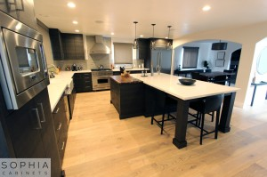 Sophia_Line_cabinets_Modern_contemporary_style_kitchen_long_beach00003