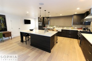 Sophia_Line_cabinets_Modern_contemporary_style_kitchen_long_beach00006