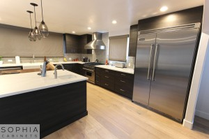 Sophia_Line_cabinets_Modern_contemporary_style_kitchen_long_beach00021