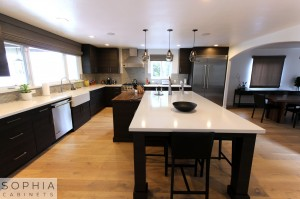 Sophia_Line_cabinets_Modern_contemporary_style_kitchen_long_beach00028