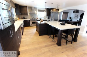 Sophia_Line_cabinets_Modern_contemporary_style_kitchen_long_beach00032